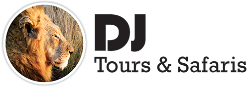 Travel in South Africa with DJ Tours and Safaris